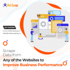 Scrape data from any of the websites to improve business performance